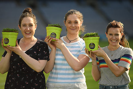 Potted pieces of Croke Park now on sale for charity